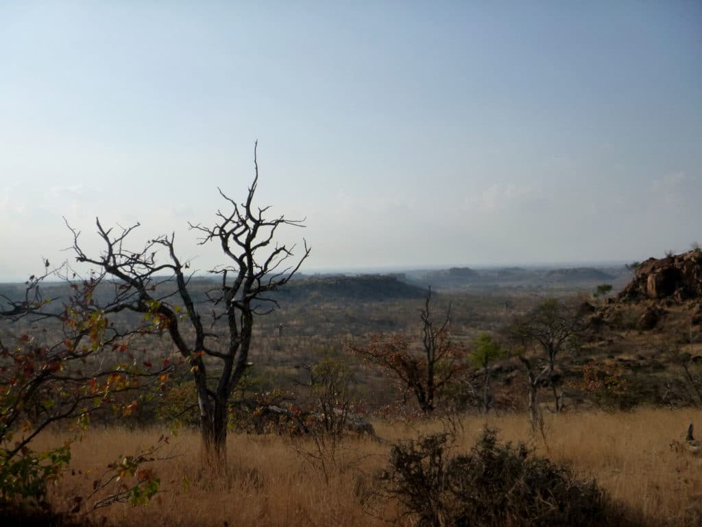 Limpopo Valley View - Mapungubwe National Park