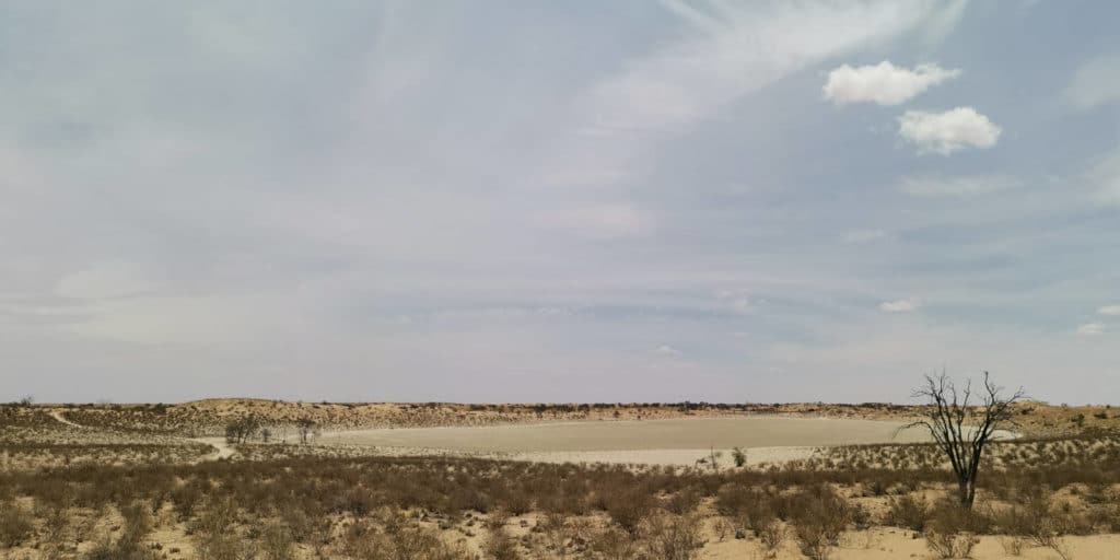 Pan Kgalagadi Transfrontier Nationalpark
