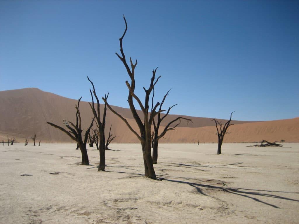 Düne Sossusvlei in der Namib Wüste