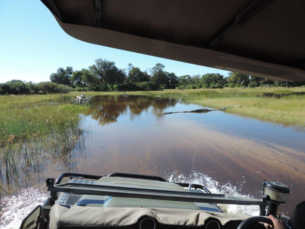 Selbstfahrer im Moremi Game Reserve