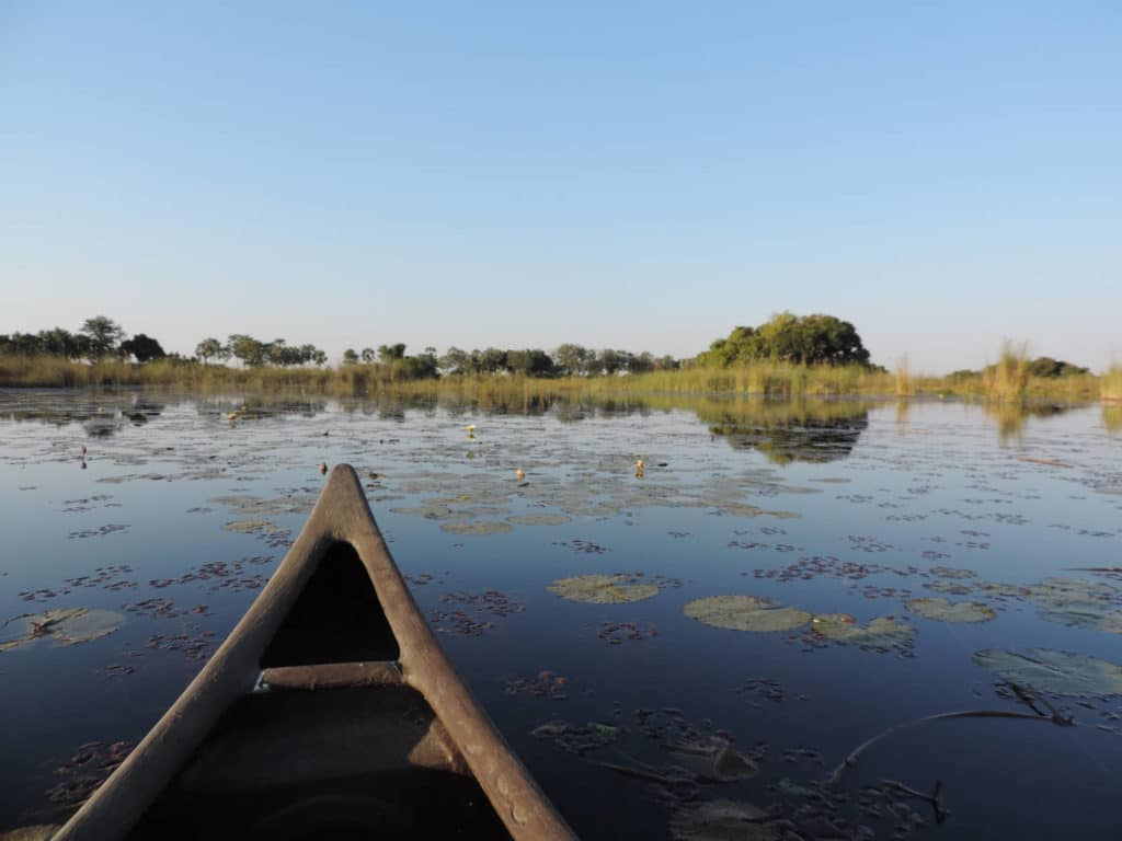 Mokoro im Okavango Delta