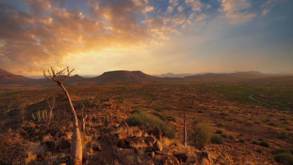 Palmwag Konzessionsgebiet Namibia